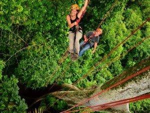 Half Day Tree climbing tour
